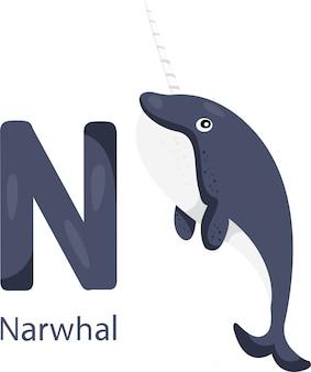 Illustratore di n con narvalo