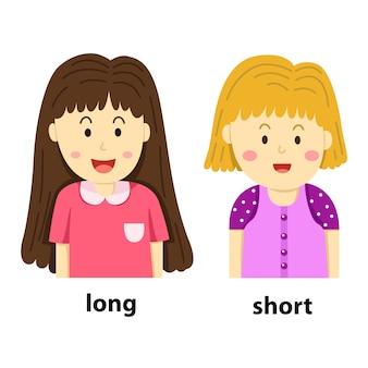 Illustratore di opposti lungo e breve