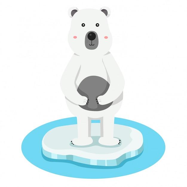 Illustratore di polare