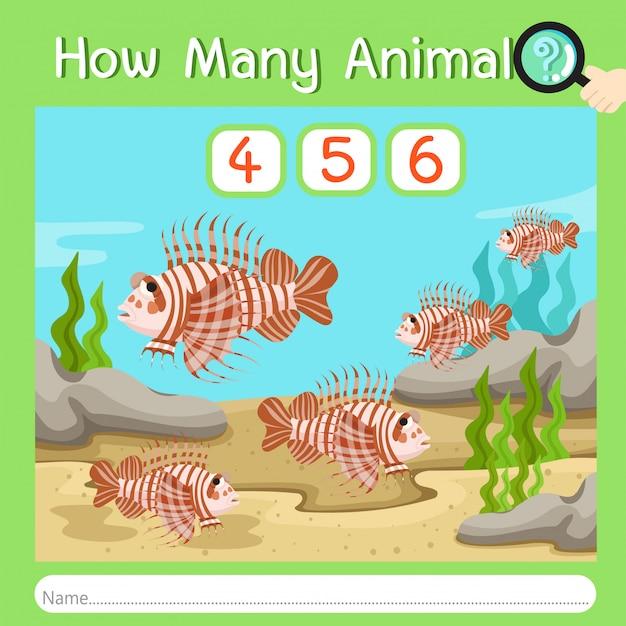 Illustratore di quanti animali nove