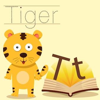 Illustratore di t per il vocabolario della tigre