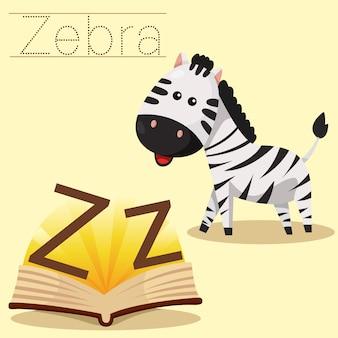 Illustratore di z per il vocabolario zebra