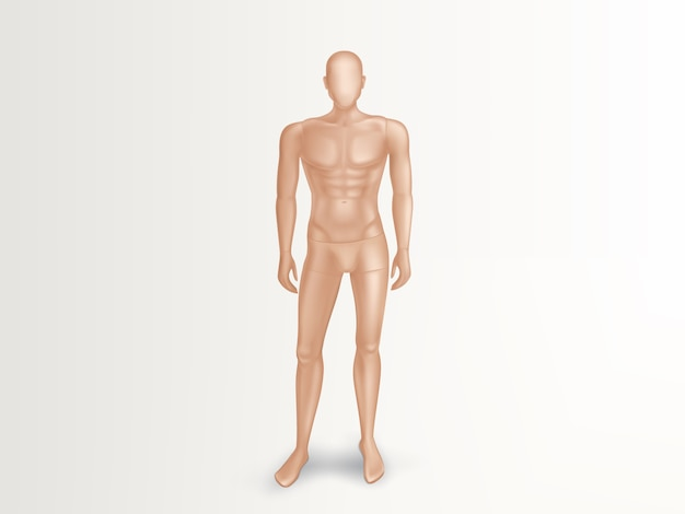 Illustrazione 3d del manichino maschio, ente completo nudo di uomo.