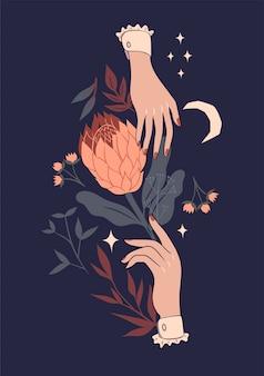 Illustrazione con fiore protea e mani.