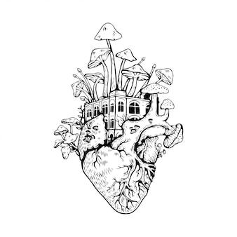 Illustrazione cuore anatomico con funghi