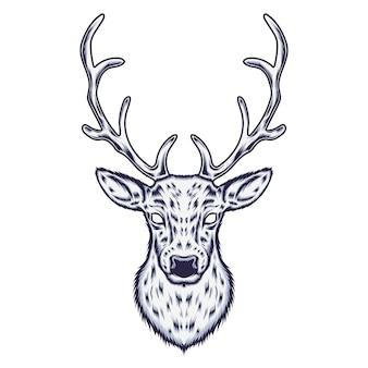 Illustrazione dei cervi