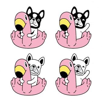 Illustrazione del fumetto dell'anello di nuoto del fenicottero del bulldog francese del cane