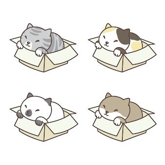 Illustrazione del fumetto della scatola del gattino di logo dell'icona di calico di vettore del gatto