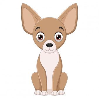 Illustrazione del fumetto di seduta del cane della chihuahua su fondo bianco