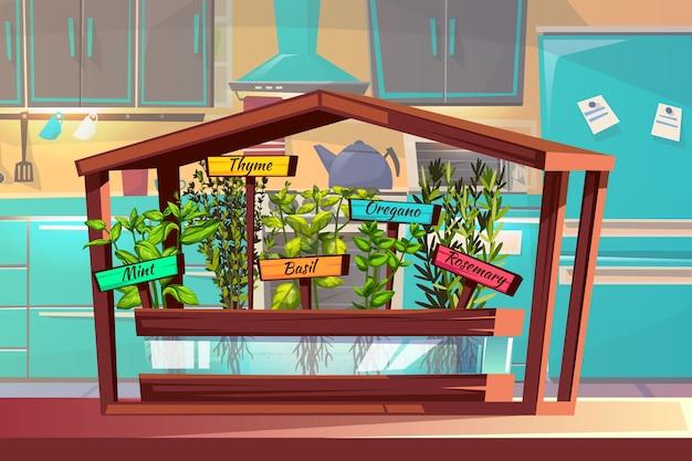 Illustrazione del giardino di cucina di erbe e spezie timo, menta o basilico e origano