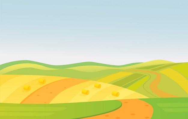 Illustrazione del paesaggio rurale di campi verdi e gialli di bella estate.