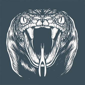 Illustrazione del volto di cobra