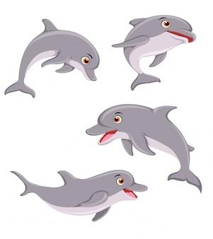 Illustrazione delfino
