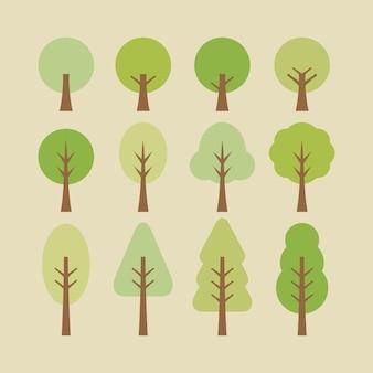 Illustrazione dell'albero