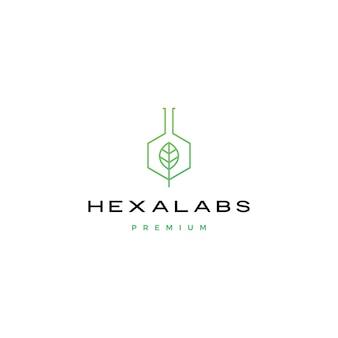 Illustrazione dell'icona di logo di hexalabs del laboratorio della natura della foglia di esagono