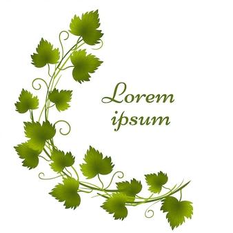 Illustrazione della corona con foglie su bianco