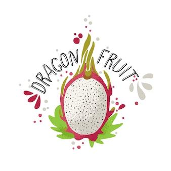 Illustrazione della frutta del drago colorata tiraggio della mano di vettore con le foglie verdi.