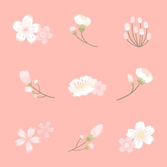 Illustrazione della priorità bassa del fiore di ciliegia