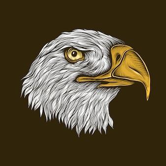 Illustrazione della testa dell'aquila calva d'annata del disegno della mano