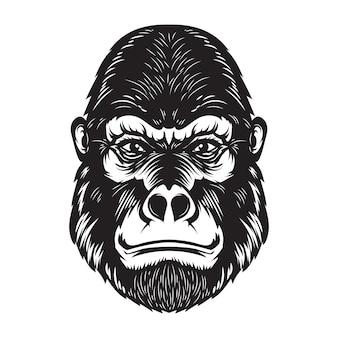 Illustrazione della testa della scimmia della gorilla su fondo bianco. elementi per poster, emblema, segno. immagine