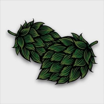 Illustrazione di birra luppolo in stile incisione