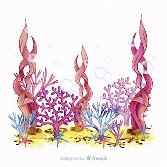 Illustrazione di corallo disegnato a mano