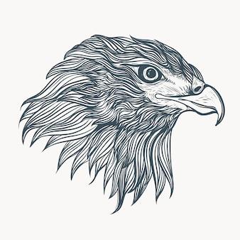 Illustrazione di eeagle disegnati a mano