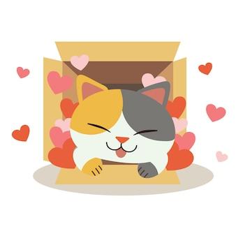 Illustrazione di gatto carino