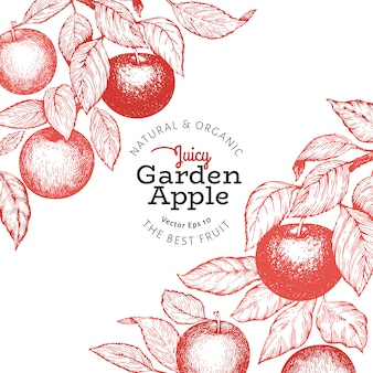 Illustrazione di mela frutta stile inciso retrò