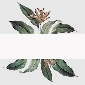 Illustrazione di mockup pianta tropicale