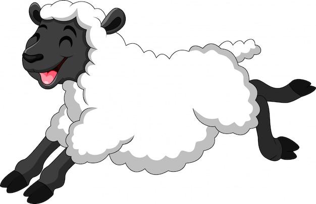 Illustrazione di pecore simpatico cartone animato