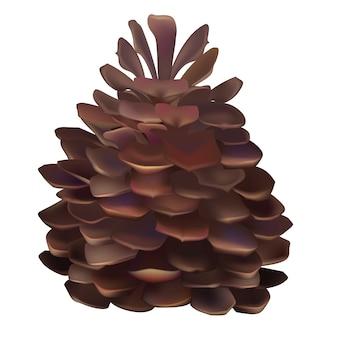 Illustrazione di pinecone isolato su sfondo bianco