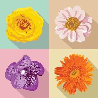 Illustrazione di quattro fiori