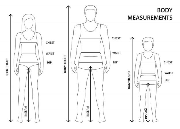 Illustrazione di sagomato uomo, donna e ragazzo in piena lunghezza con linee di misurazione dei parametri corporei. misure taglie uomo, donna e bambino.
