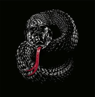 Illustrazione di serpente vipera