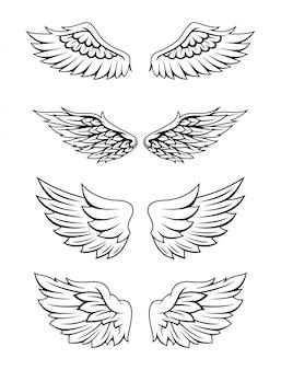 Illustrazione di set di raccolta di ali