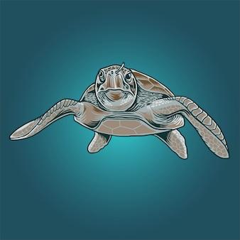 Illustrazione di tartarughe marine