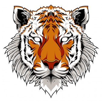 Illustrazione di tiger head