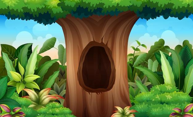 Illustrazione di un grande tronco di un albero con un buco