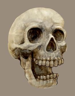 Illustrazione di un'icona del cranio per halloween