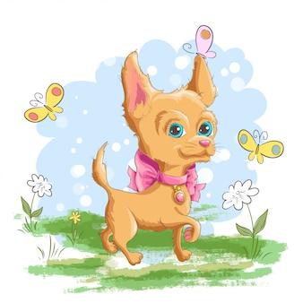 Illustrazione di un simpatico cagnolino chiguagua con fiori e farfalle