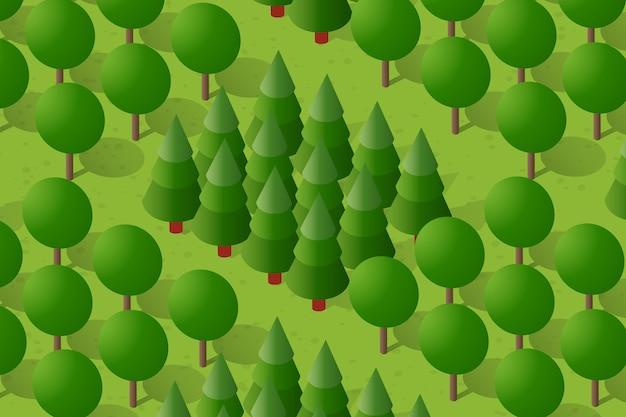 Illustrazione di una foresta di campagna