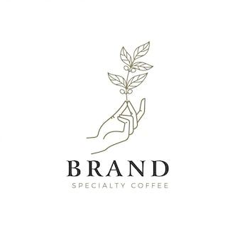Illustrazione di una mano che tiene una pianta del caffè per il logo