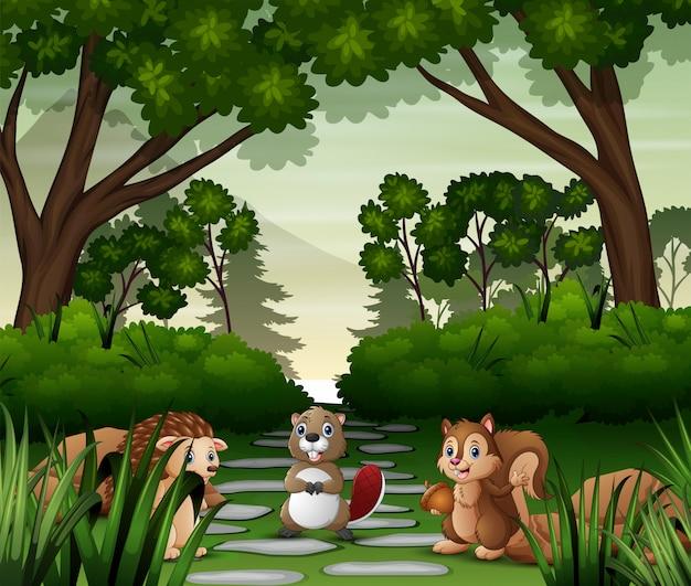 Illustrazione di vari animali nella foresta
