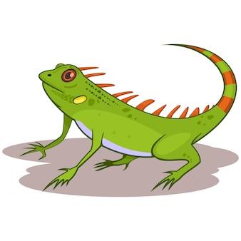 Illustrazione di vettore del fumetto del rettile dell'iguana isolata su bianco