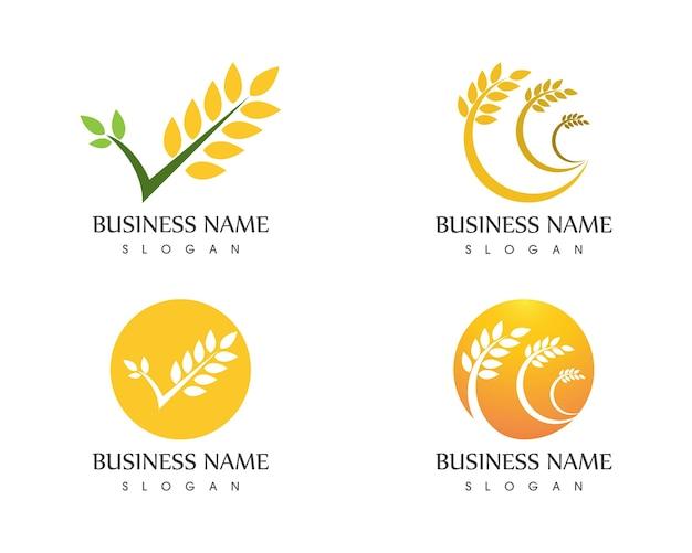 Illustrazione di vettore di logo icona di riso di grano