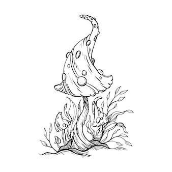 Illustrazione disegnata a mano dei funghi