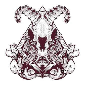 Illustrazione disegnata a mano del cranio animale