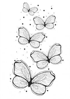 Illustrazione disegnata a mano della farfalla di bellezza