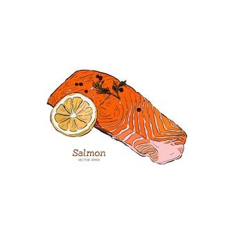 Illustrazione disegnata a mano di bistecca di salmone.